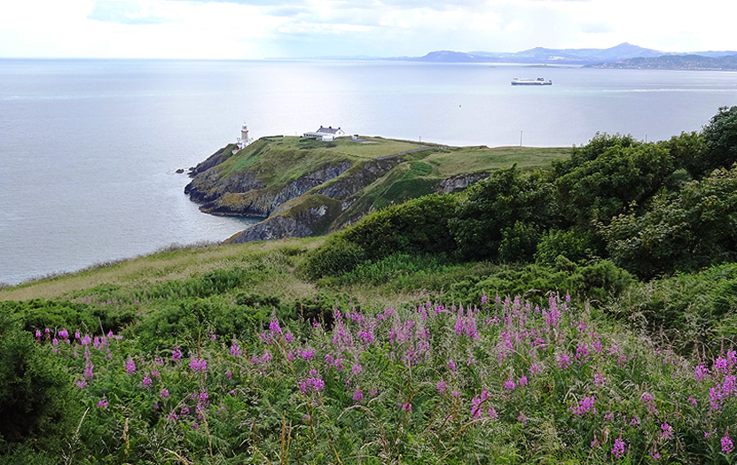 The Baily Lighthouse, one of the centers of interest for visitors drawn in by the path along the Howth cliffs.
